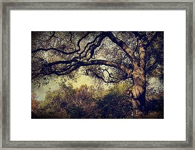 Just How It Ought To Be Framed Print by Laurie Search