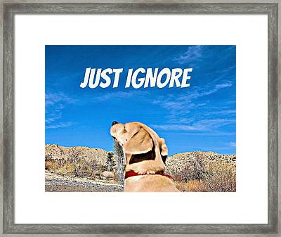 Just Ignore Framed Print by Angela J Wright