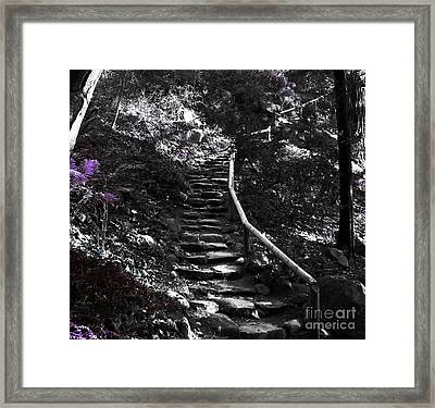 Just Imagine Framed Print by Janice Westerberg