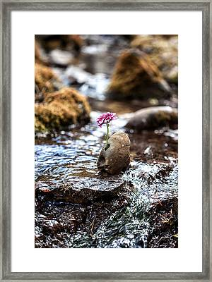 Just Let Your Love Flow Framed Print by Aaron Aldrich
