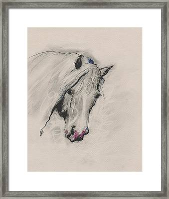 Just Me Framed Print by Mary Armstrong
