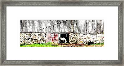Just Me - Ontario - Canada Framed Print