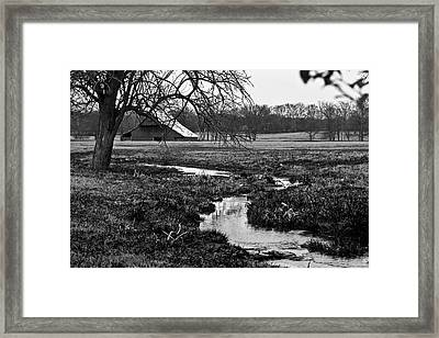 Just Of The Road To Franklin Framed Print by Tamara Gentuso
