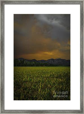 Just One Of Those Days Framed Print by Mitch Shindelbower