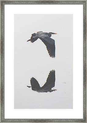 Just Passing By Framed Print