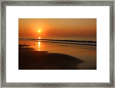Just The Four Of Us Framed Print