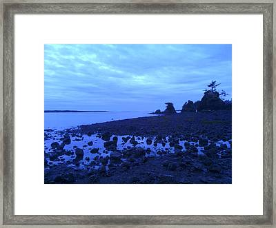 Just The Right Tide Framed Print by Sheldon Blackwell