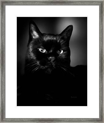 Just Thinking Framed Print by Bob Orsillo
