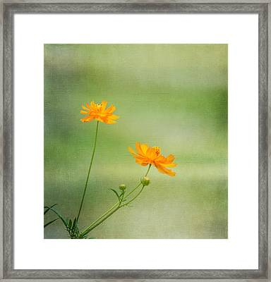 Just Two Framed Print by Kim Hojnacki