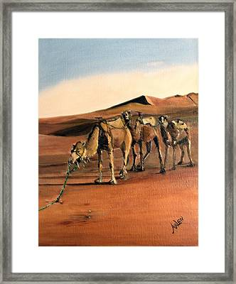 Just Us Camels Framed Print