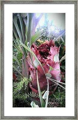 Just When You Think Framed Print