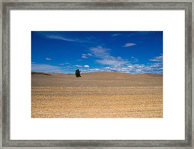 Just You And I Framed Print by Kunal Mehra