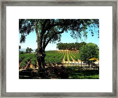 Justin Vineyards Paso Robles California Wine Country Winery Framed Print by Ron Bartels