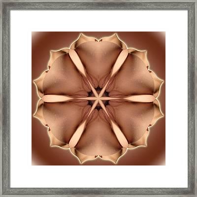K1177 Sexual Mandala For Erotic Spirituality Framed Print by Chris Maher
