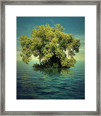 K15 Framed Print by Radoslav Penchev