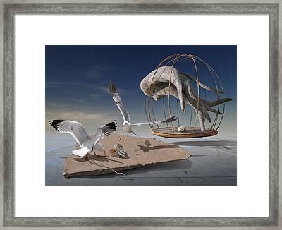 K204 Framed Print by Radoslav Penchev
