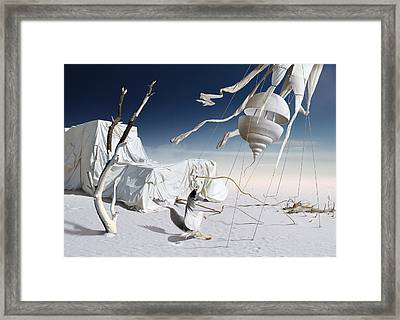 K206 Framed Print by Radoslav Penchev