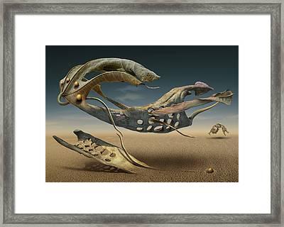 K214 Framed Print by Radoslav Penchev