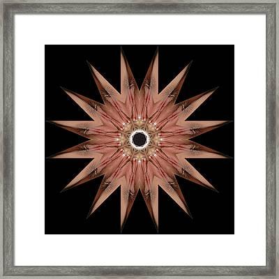 K8985b Sexual Mandala For Erotic Spirituality Framed Print by Chris Maher