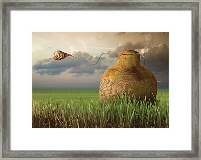 K96 Framed Print by Radoslav Penchev