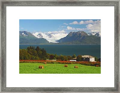Kachemak Bay And Kenia Mountains Framed Print by Michel Hersen