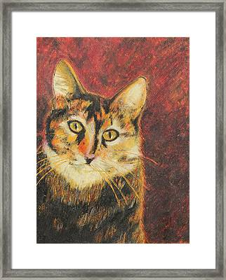Framed Print featuring the painting Kaco by Jeanne Fischer