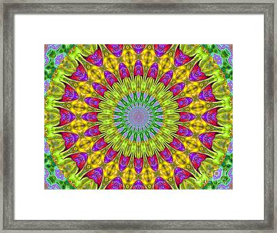 Kaeidoscope Shapes Framed Print by Suzanne Handel