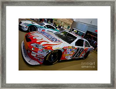 Kail Bush 18 Framed Print