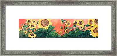 Kait's Sunflowers Framed Print by Jessica Tookey