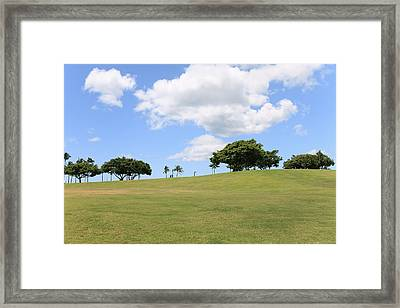 Kakaako Park Framed Print by Brandon Tabiolo