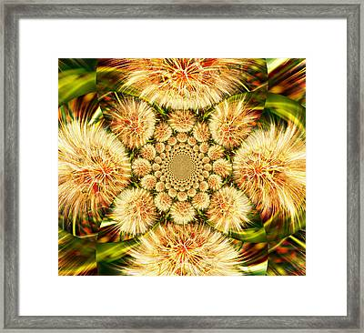 Kaladiscope 4 Framed Print
