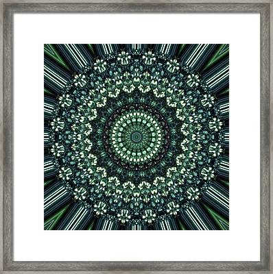 Kaleidoscope 10 Framed Print by Tom Druin