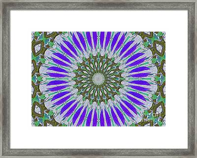 Kaleidoscope Celtic Framed Print by Suzanne Handel