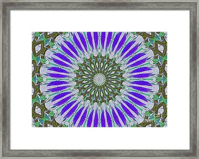 Kaleidoscope Celtic Framed Print