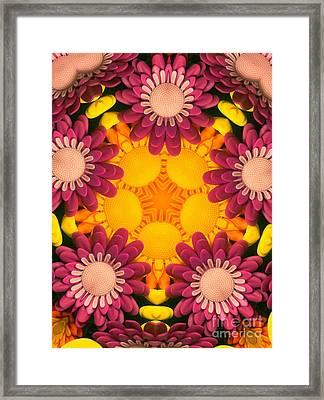 Kaleidoscope Daisies Framed Print