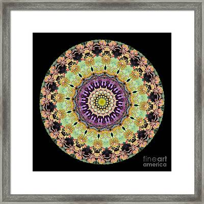 Kaleidoscope Ernst Haeckl Inspired Sea Life Series Framed Print by Amy Cicconi
