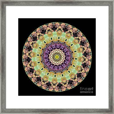 Kaleidoscope Ernst Haeckl Inspired Sea Life Series Framed Print