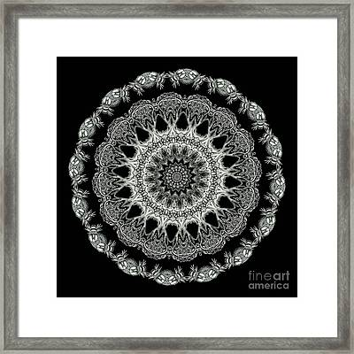 Kaleidoscope Ernst Haeckl Sea Life Series Black And White Set 2 Framed Print