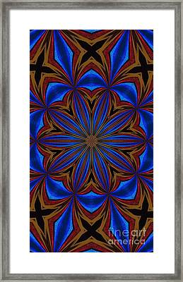 Kaleidoscope Feathers Four Framed Print by Suzanne Handel