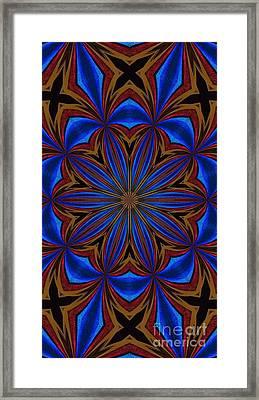 Kaleidoscope Feathers Four Framed Print