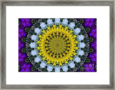 Kaleidoscope Flowers Framed Print by Suzanne Handel