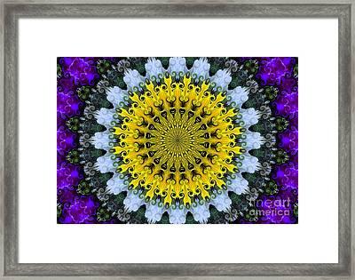 Kaleidoscope Flowers Framed Print