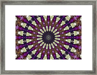 Kaleidoscope Iris Framed Print