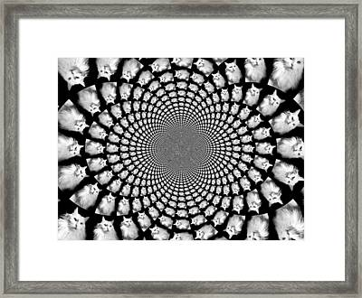Kaleidoscope Kitteh Turkish Angora Horizontal Framed Print