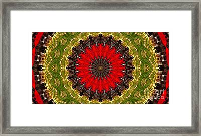 Kaleidoscope Leaves Framed Print by Suzanne Handel