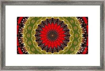 Kaleidoscope Leaves Framed Print