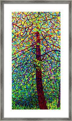 Kaleidoscope Framed Print by Mandy Budan