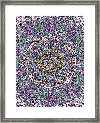Framed Print featuring the photograph Kaleidoscope by Robyn King