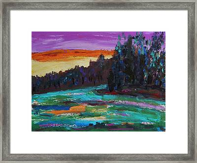 Kaleidoscope Sky Framed Print by Mary Carol Williams