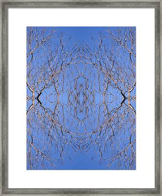 Kaleidoscope - Trees 1 Framed Print by Andy Shomock